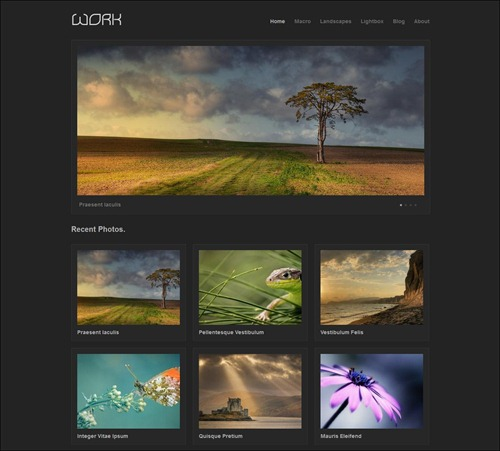work photography website template