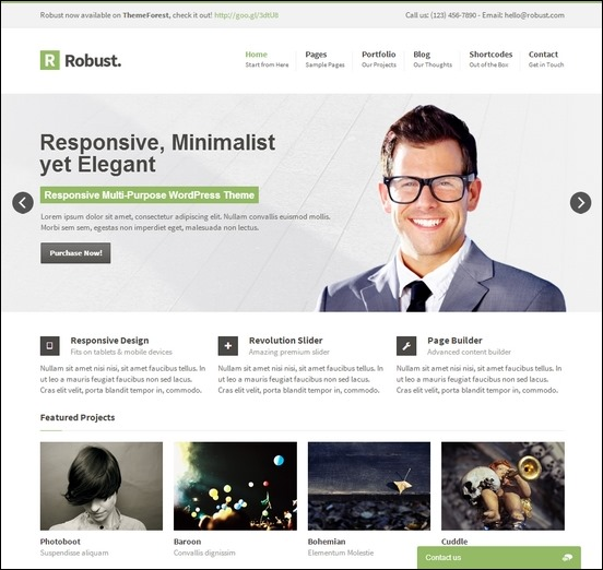 robust-responsive-multipurpose-wp-theme