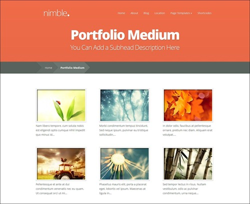 nimble photography website template