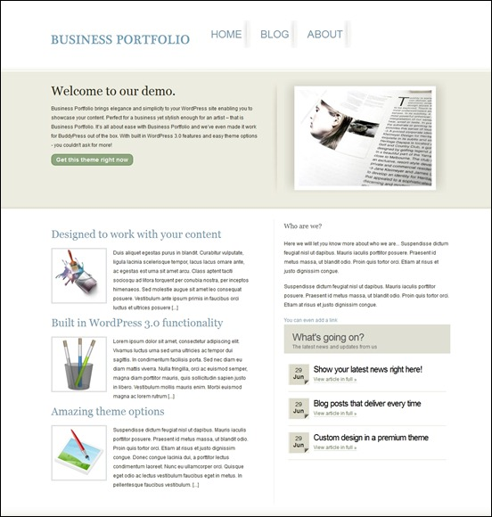 business-portfolio-buddypress-theme