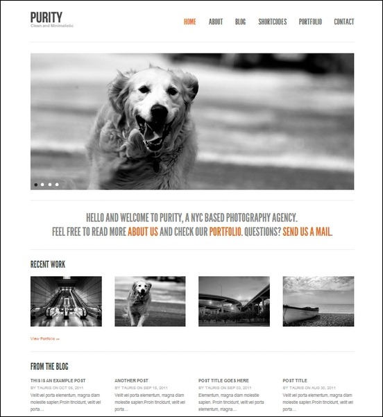 purity-clean-minimal-bold-wordpress-theme