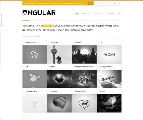 angular photography website template