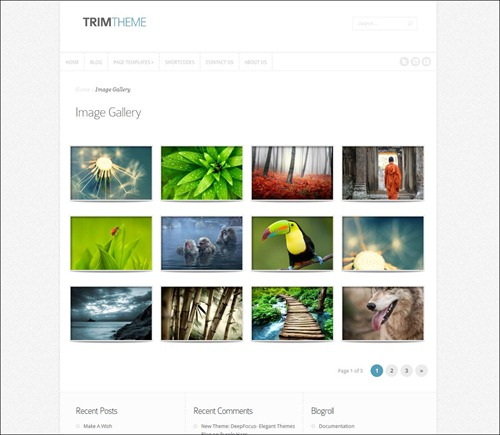 trim photography website template