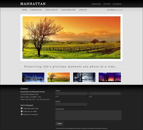 manhatten photography website template