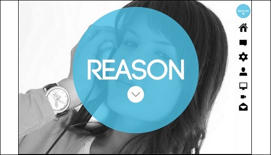 reason-wordpress-responsive-parallax-theme[5]