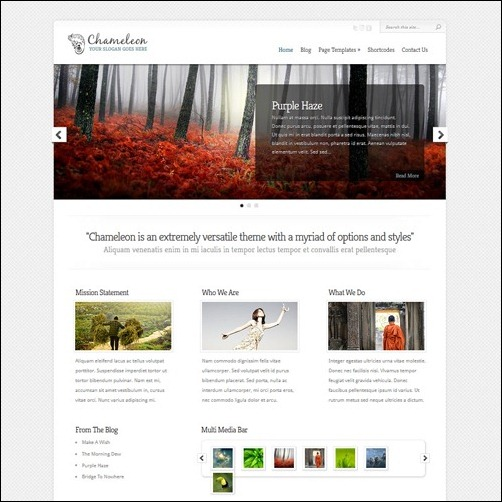 chamelleon WordPress Business Themes