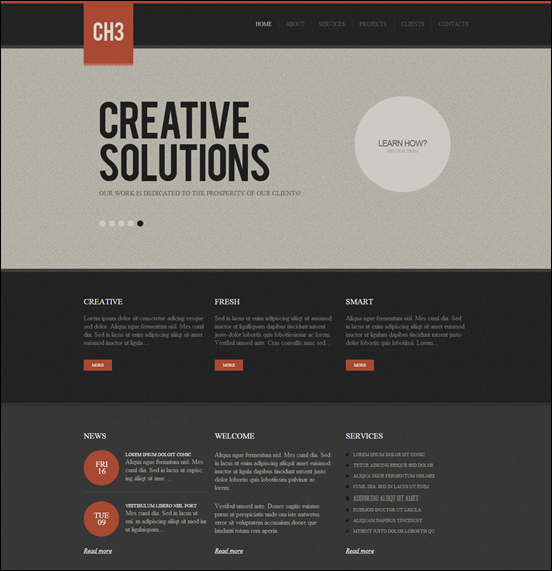 Wordpress Theme #35996