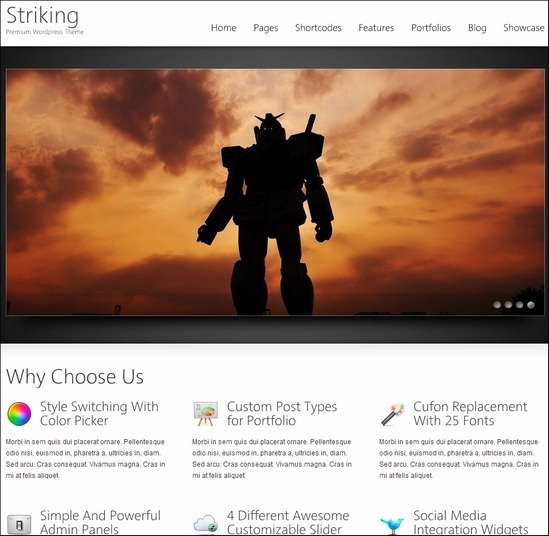 striking-premium-wp-theme