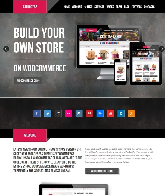 cuckootap-responsive-single-page-wordpress-theme