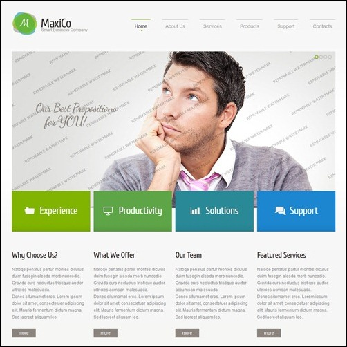 Templates per siti web commerciali e il tuo business for Consulting website
