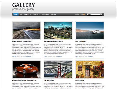 Gallery WordPress Portfolio Theme