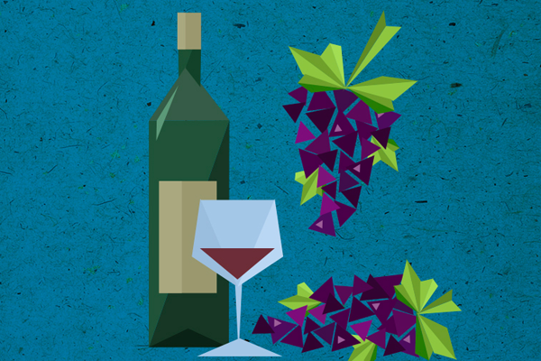 wine grapes alcohol illustration graphics