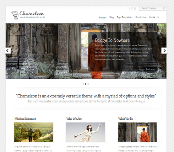 Chameleon is a responsive wordpress theme for all around use.