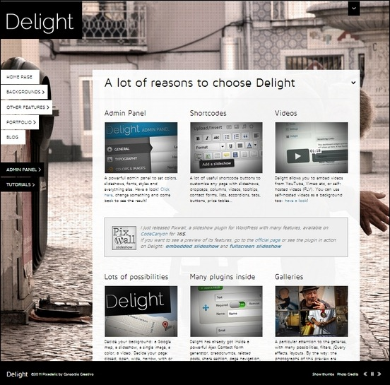 delight a powerful professional wordpress theme