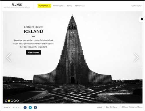 Fluxus Portfolio Theme for Photographers