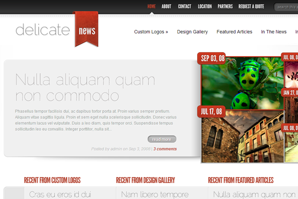wordpress premium theme delicatenews