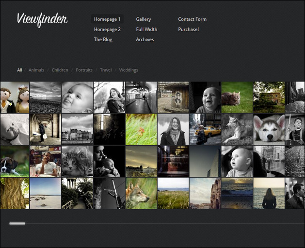 Viewfinder - Photography wordpress theme