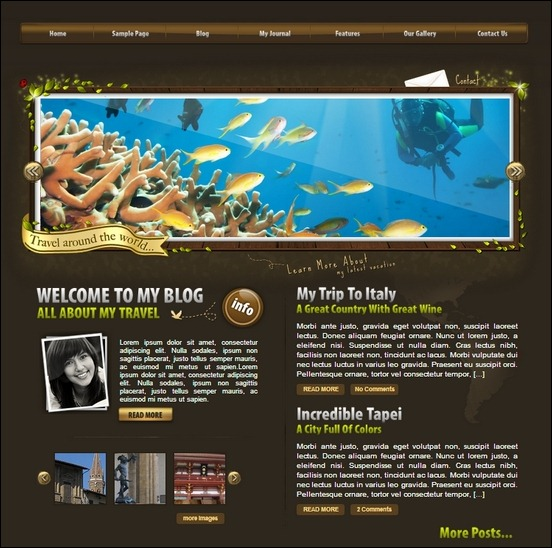 worldtraveller a cool template used to create nature like blog site.