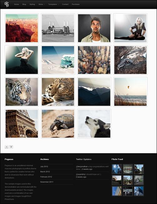 Pegasus Responsive Photography & Portfolio WordPress Theme