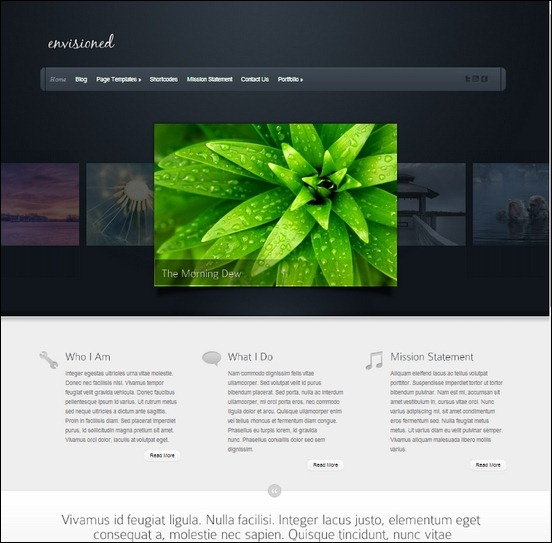 envisioned is a unique wordpress theme used to create powerful gallery theme