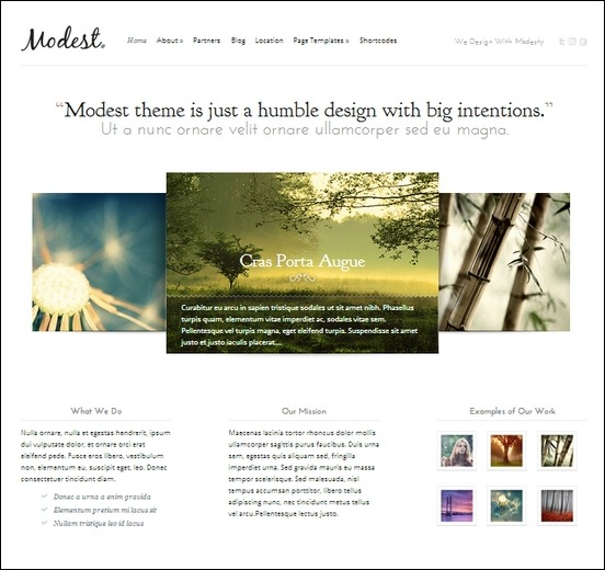 modest is a cleam minimal wordpress theme