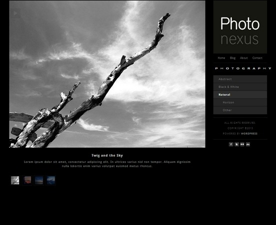 photo nexus is a 2 in 1 gallery theme for wordpress