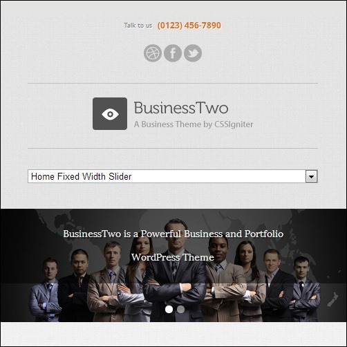 ignite WordPress Business Theme