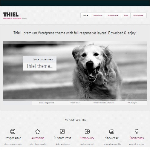 thiel WordPress Business Theme