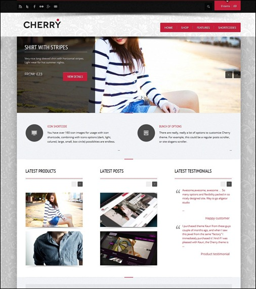 cherry-wordpress-commerce-theme