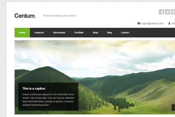 clean responsive wordpress premium theme