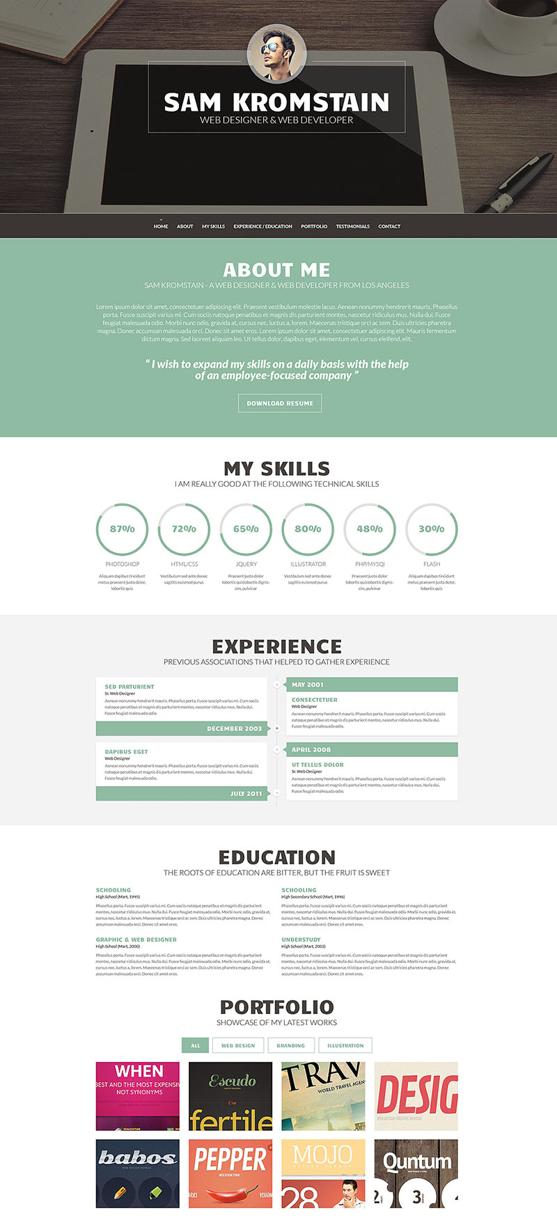 Web Developer CV WordPress Theme
