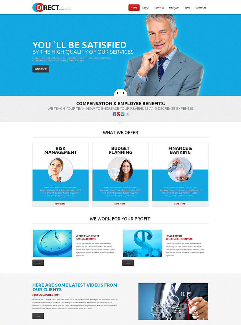 Management of High Quality WordPress Theme