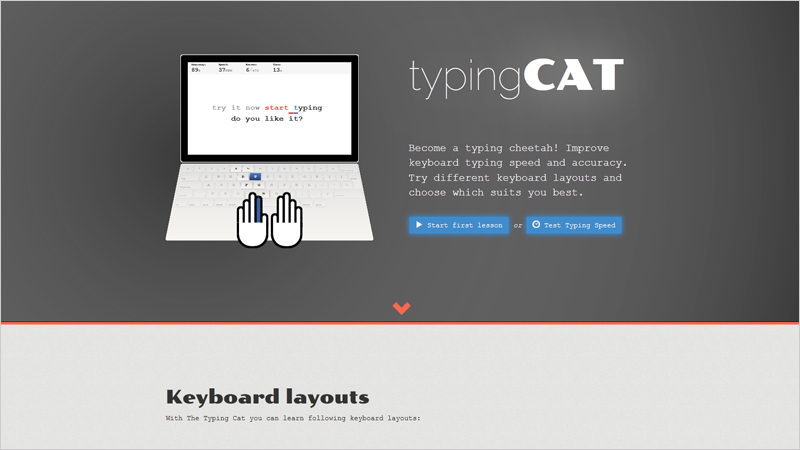 The Typing Cat