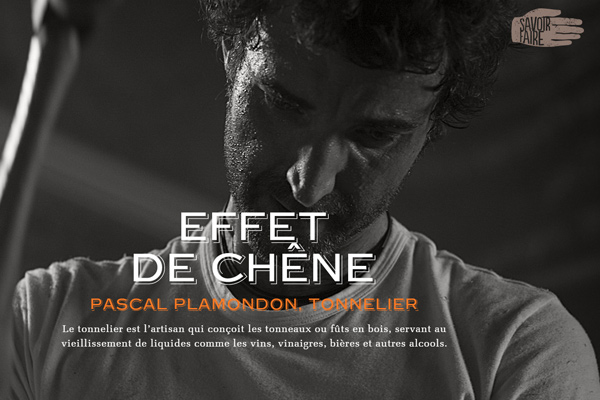 savoir faire pascal plamondon website homepage