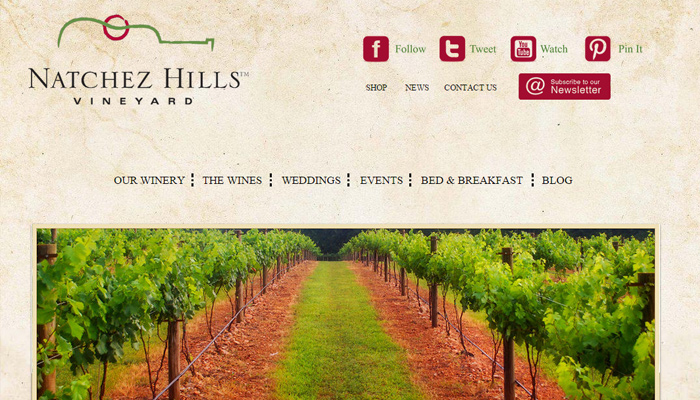 natchez hills vineyard grunge tan website