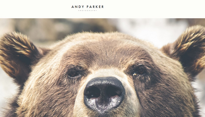 andy parker photography portfolio wp theme