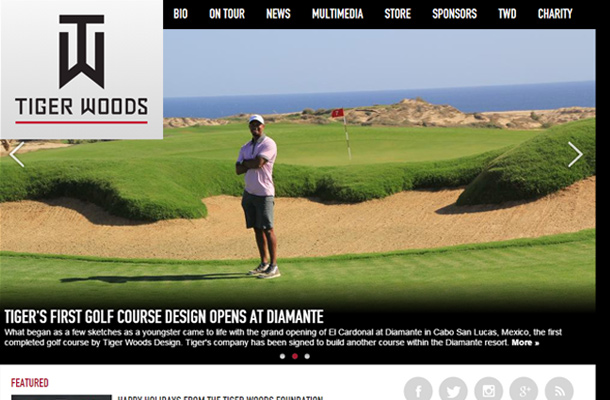 tiger woods pro golfer personal website