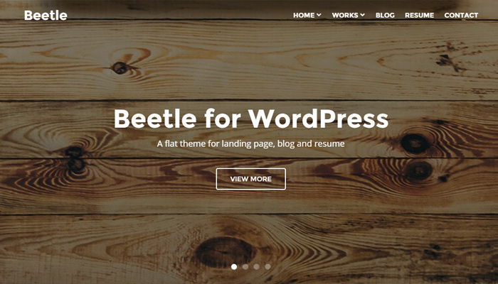 flat beetle theme portfolio wordpress