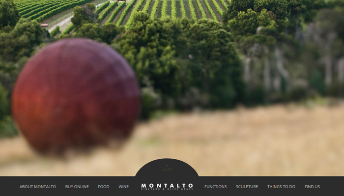 mornington peninsula montalto vineyard olive grove
