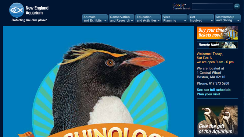 new england aquarium website layout