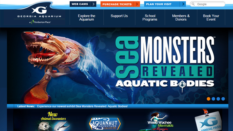 georgia aquarium website design inspiration