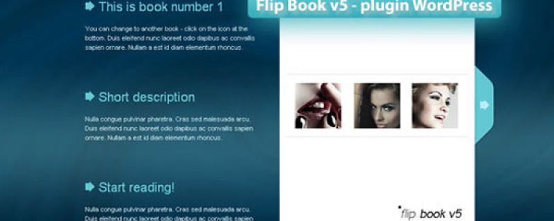 Cataloghi sfogliabili online: plugin WordPress FlipBook v5
