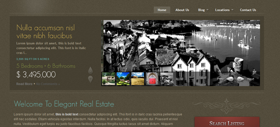 elegant real estate 25 High Quality Real Estate WordPress Themes