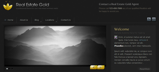 real estate gold 25 High Quality Real Estate WordPress Themes