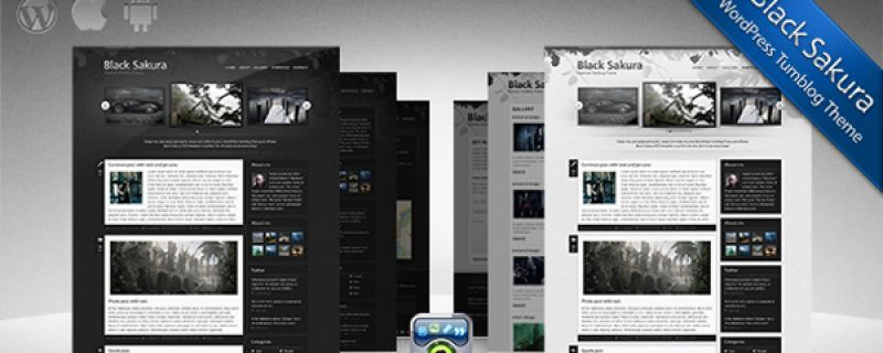 Themeforest theme per WordPress: Black Sakura WP Tumblog theme